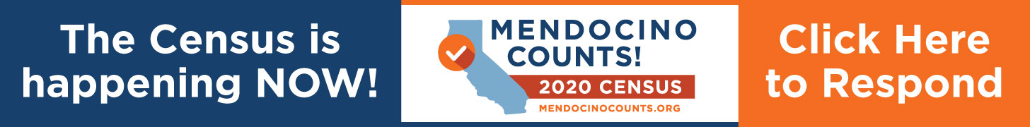 Mendocino Counts census