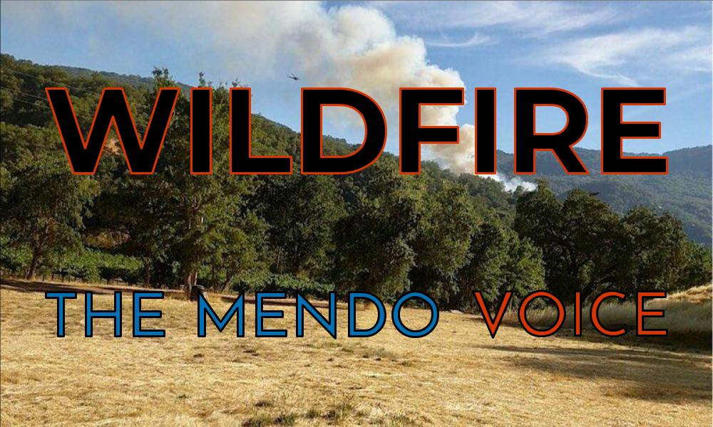 wildfire graphic